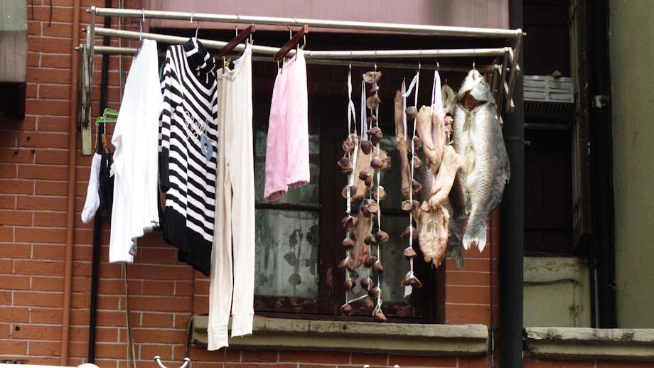 dry fish in shanghai