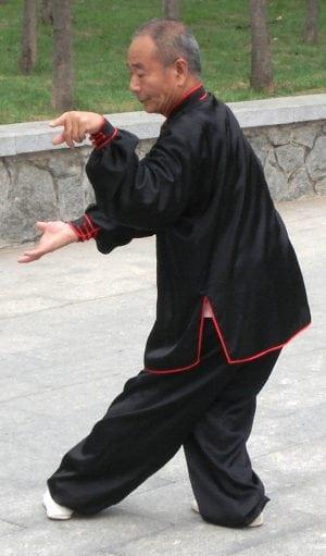 Zhou Shifu showing yao zhan