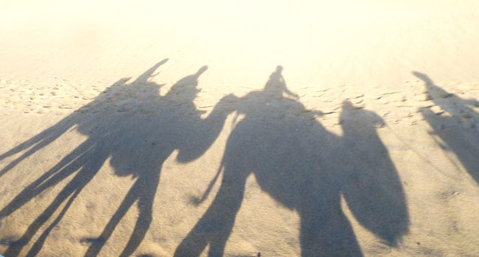 Shadows of camels on Mingsha Shan