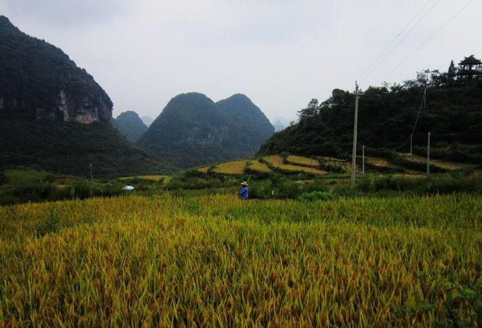 Nangang countryside