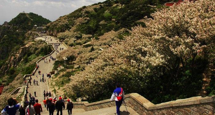 Climbing Tai Shan