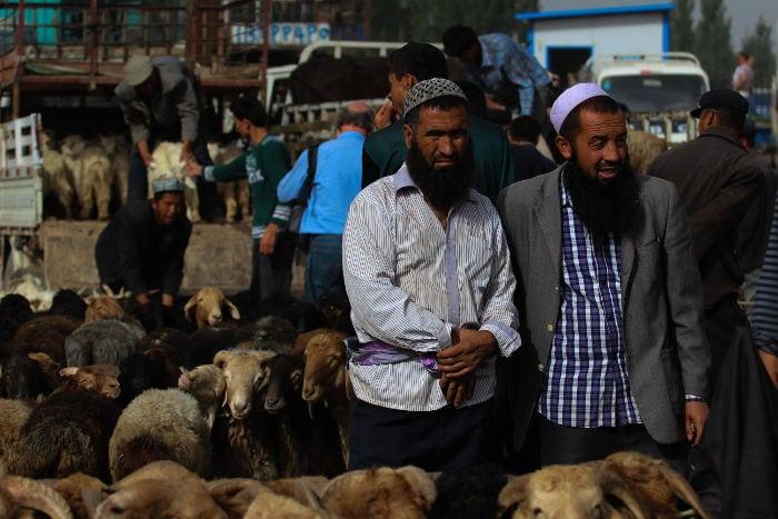 Livestock market Kashgar