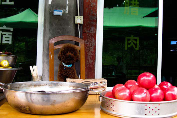 Emei Shan Sichuan