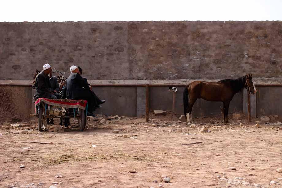Mercado de Ganado, Kashgar