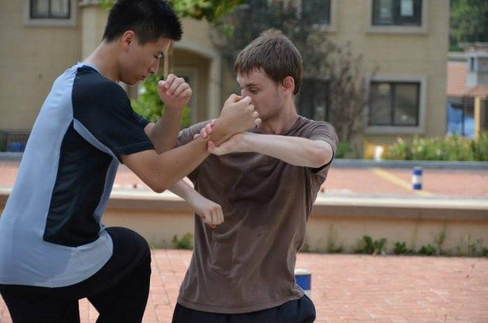 estilo kung fu Mantis
