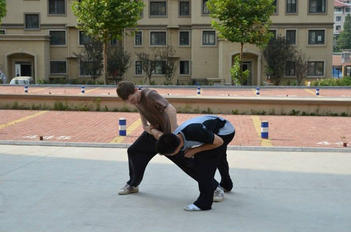tecnica kung fu mantis