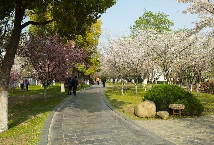 El parque Mochouhu