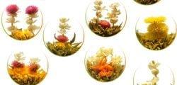 mezcla de tés de flores