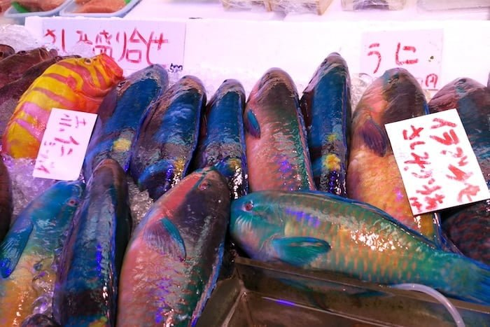 El mercado de pescado de Ishigaki