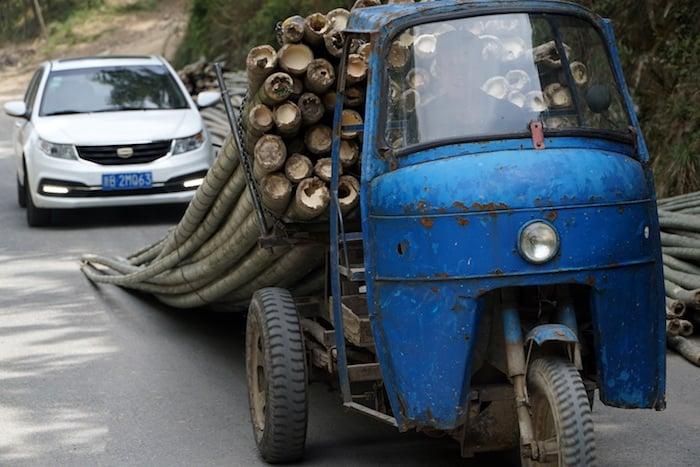 Transporte típico del bambú