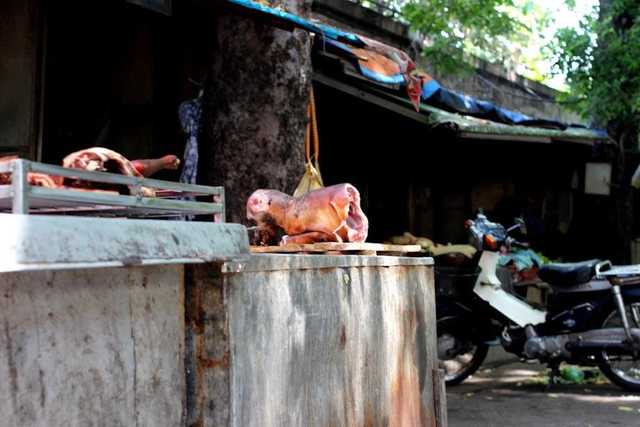 Carne Di Cane In Vietnam Foto Esplicite