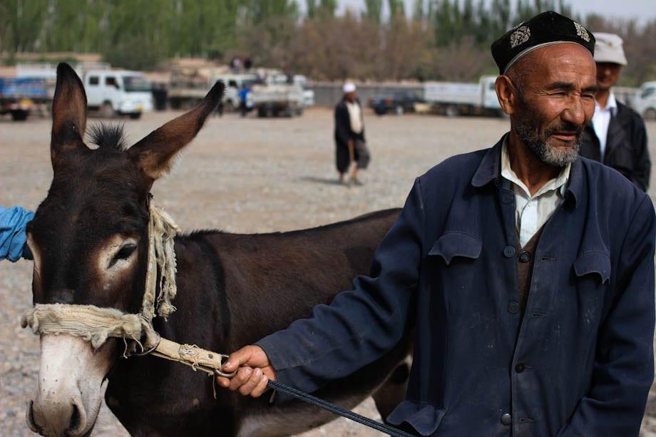 mercato dell'allevamento di Kashgar