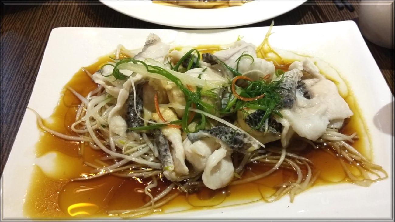cibo Xiamen