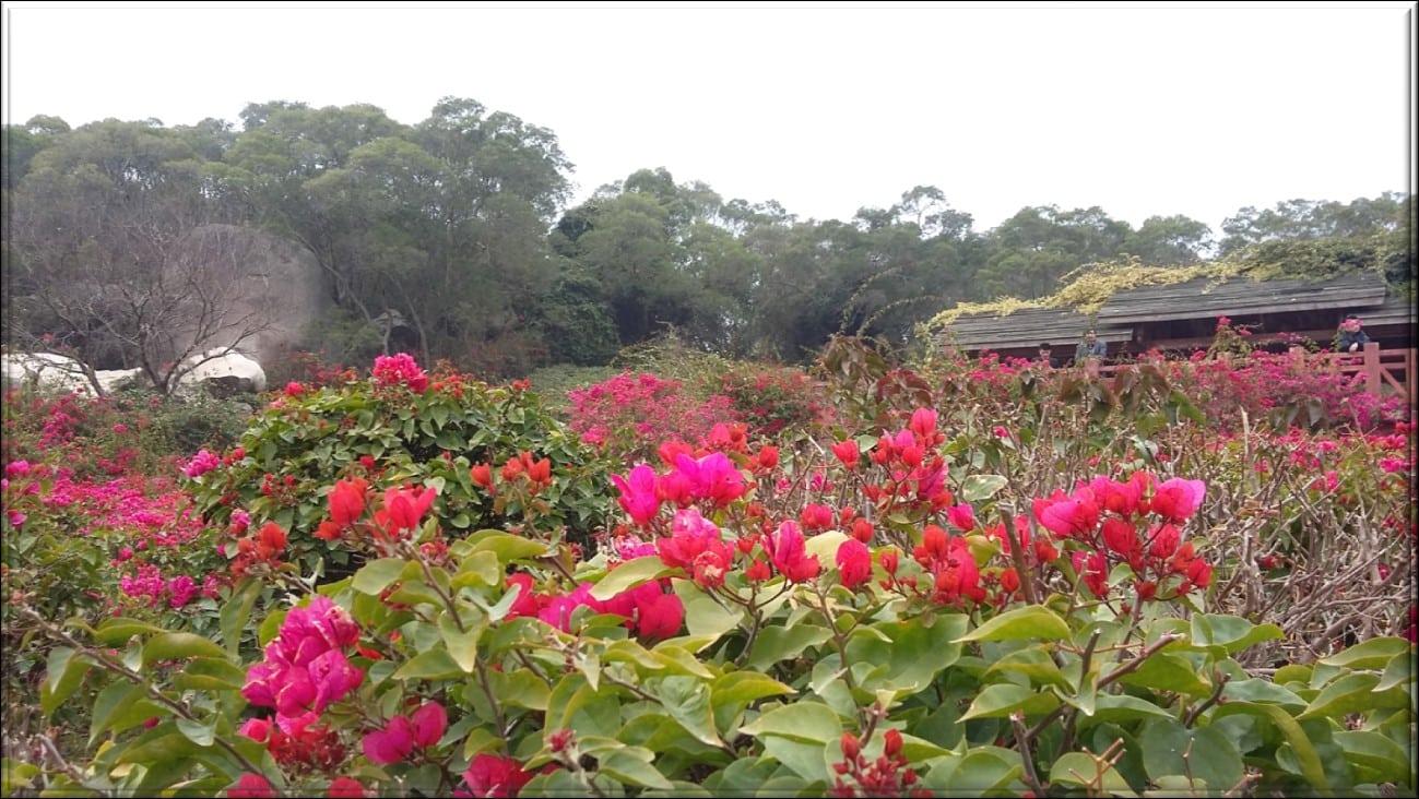 parco Xiamen