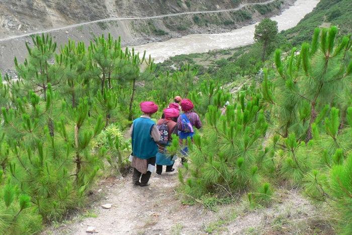 trekkinggentedelpostocizhong