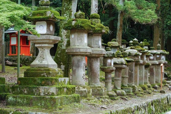 Nara Park
