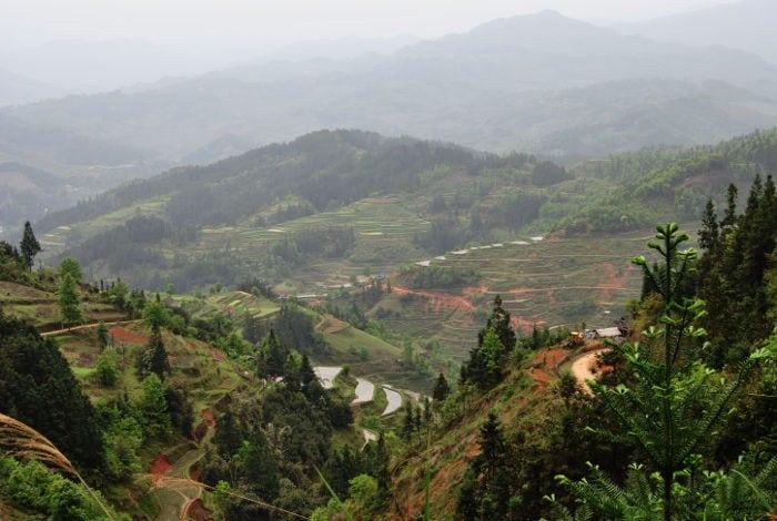 Risaie in Guizhou